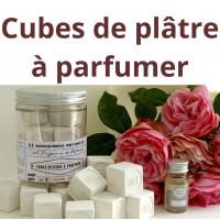 Cubes de Plâtre |D'un Sud à l'autre | Savon de Marseille